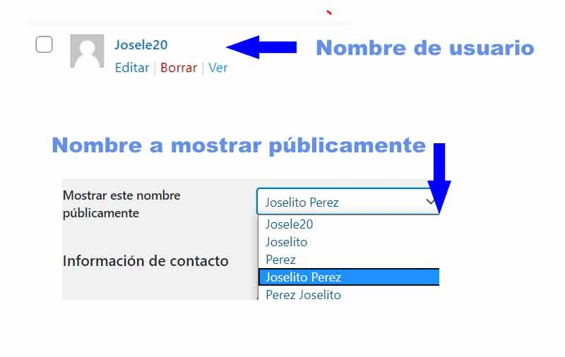 crear usuarios wordpress