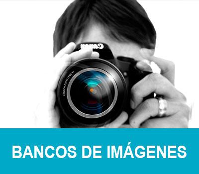Bancos de imágenes | Gratis y de pago 2021