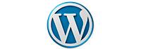 curso seo arquitectura web