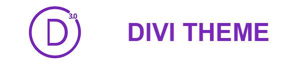 Curso wordpress Divi Theme